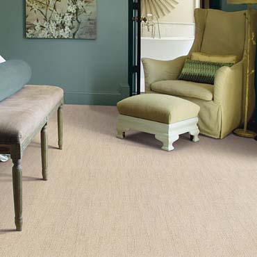 Caress Carpet by Shaw | San Antonio, TX