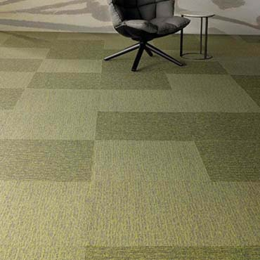 Patcraft Commercial Carpet | San Antonio, TX